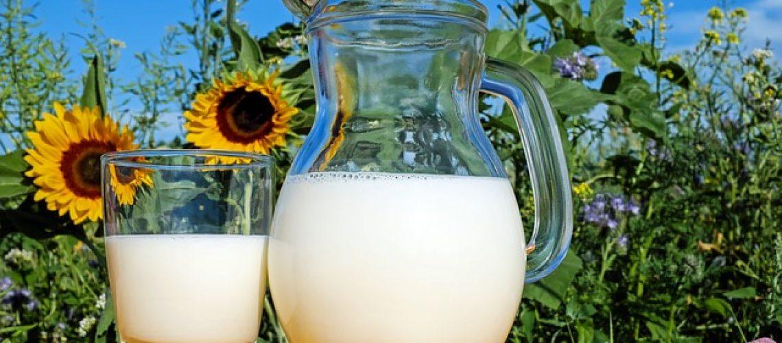 מאיפה מזמינים מוצרי חלב למשרדים?